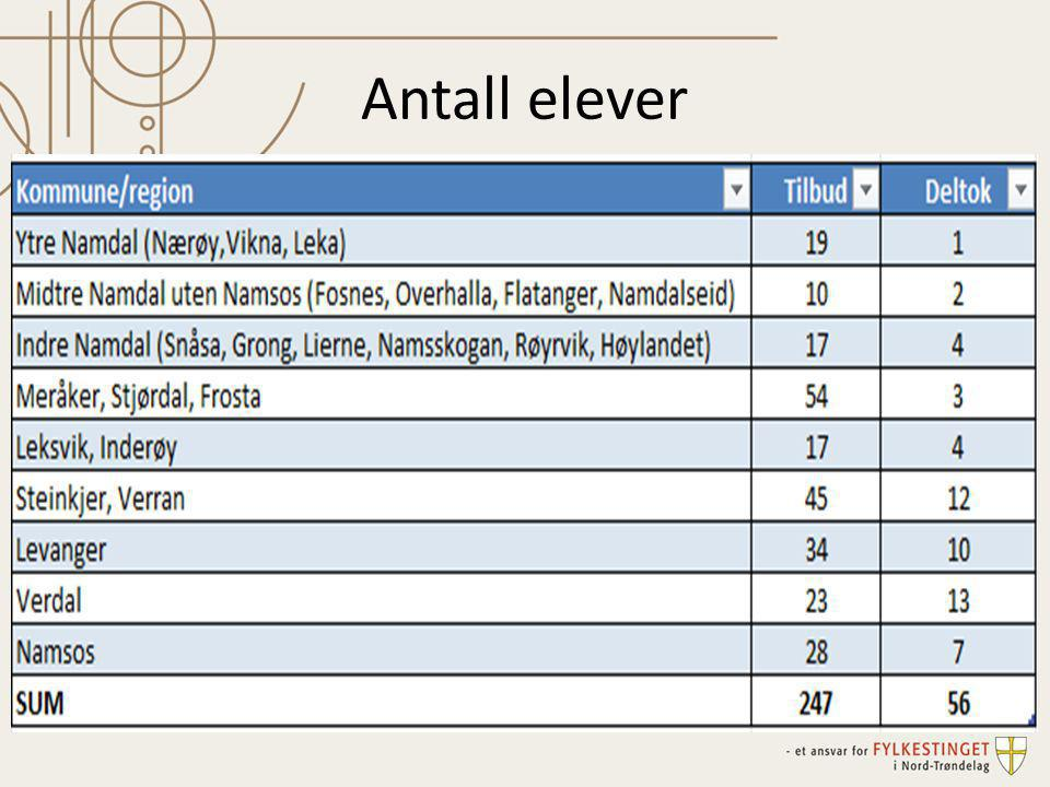 Antall elever