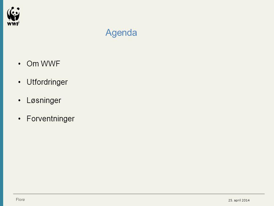 Agenda Om WWF Utfordringer Løsninger Forventninger Om WWF