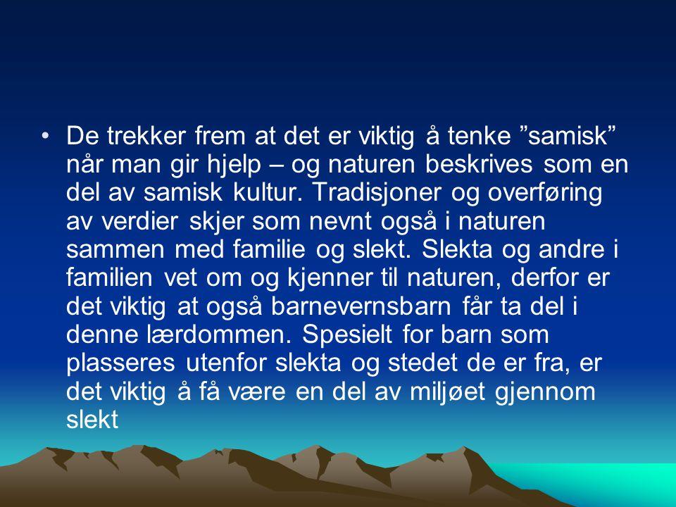 De trekker frem at det er viktig å tenke samisk når man gir hjelp – og naturen beskrives som en del av samisk kultur.