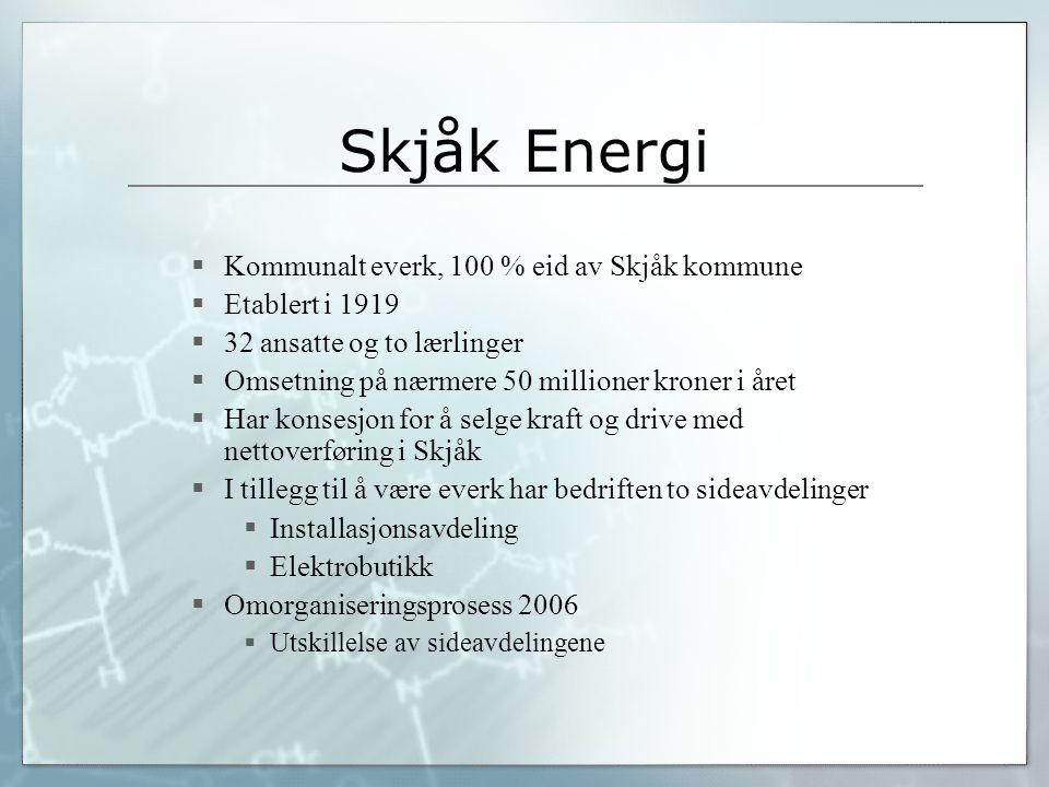 Skjåk Energi Kommunalt everk, 100 % eid av Skjåk kommune