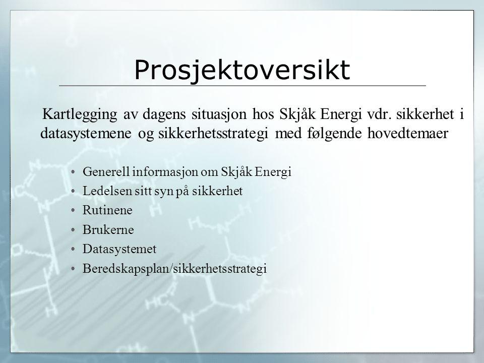 Prosjektoversikt Kartlegging av dagens situasjon hos Skjåk Energi vdr. sikkerhet i datasystemene og sikkerhetsstrategi med følgende hovedtemaer.
