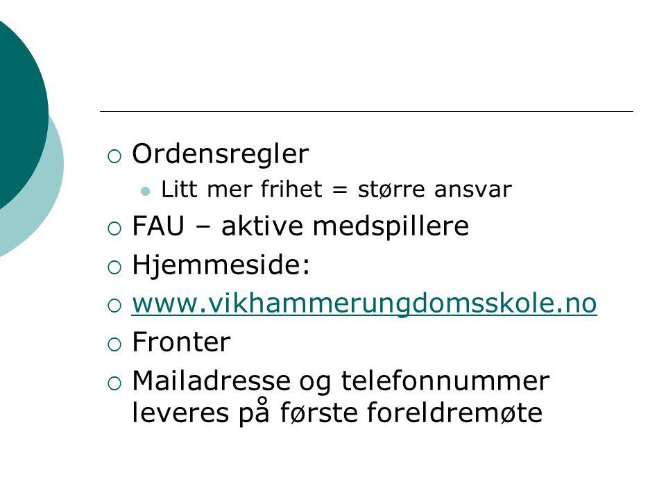 FAU – aktive medspillere Hjemmeside: www.vikhammerungdomsskole.no