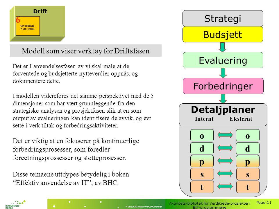 Strategi 6 Budsjett Evaluering Forbedringer Detaljplaner o d p s t
