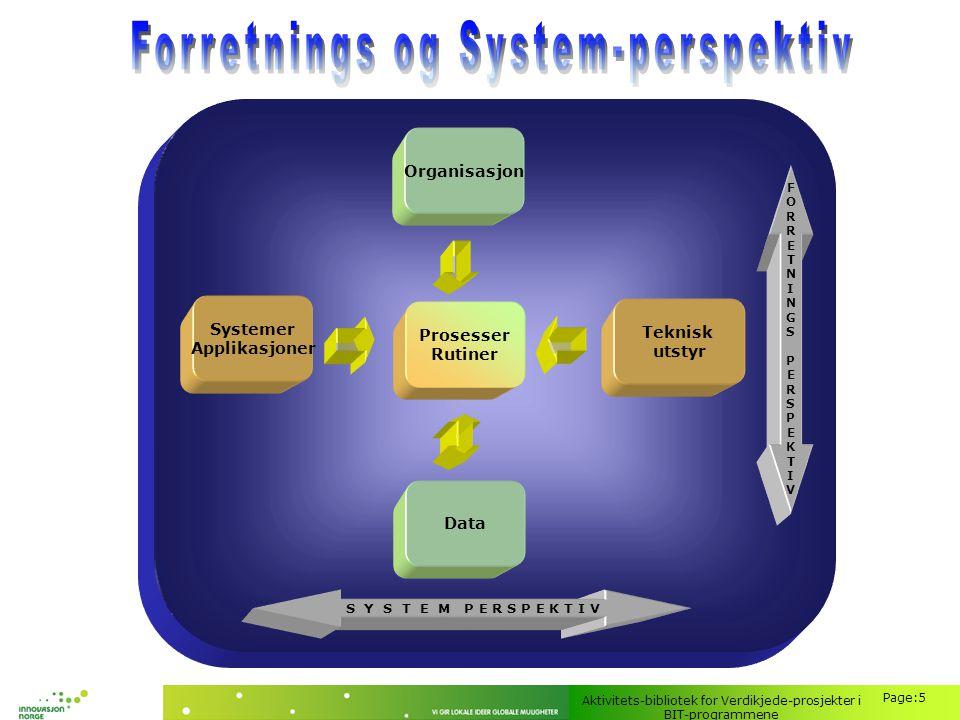 Forretnings og System-perspektiv