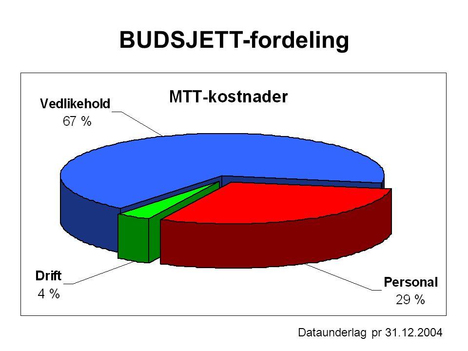 BUDSJETT-fordeling Dataunderlag pr 31.12.2004