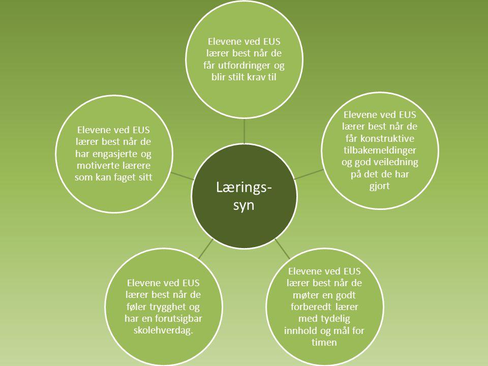 Lærings- syn Elevene ved EUS lærer best når de får utfordringer og blir stilt krav til.