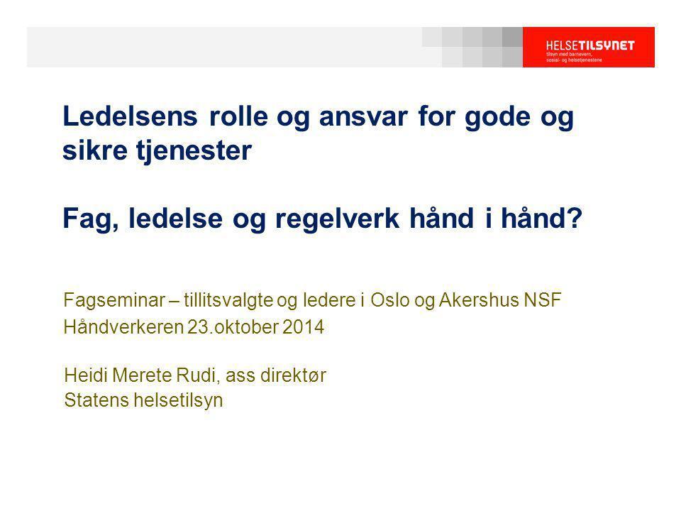 Heidi Merete Rudi, ass direktør Statens helsetilsyn