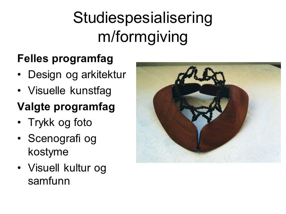 Studiespesialisering m/formgiving