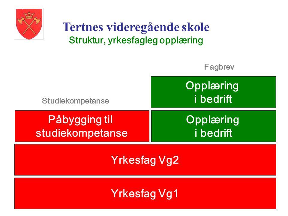 Tertnes videregående skole Struktur, yrkesfagleg opplæring