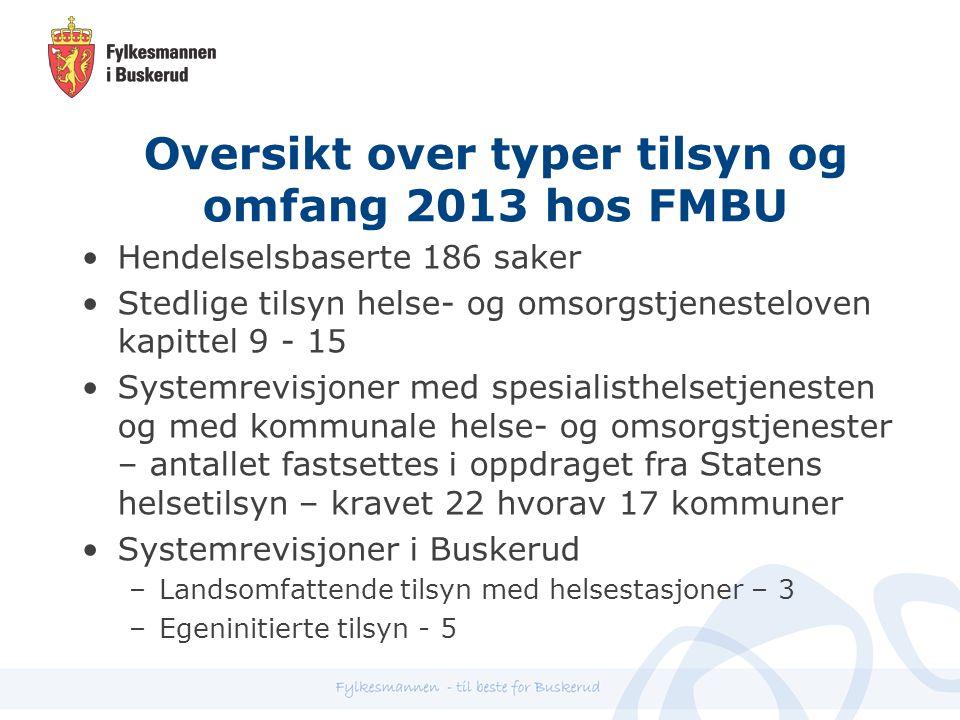 Oversikt over typer tilsyn og omfang 2013 hos FMBU