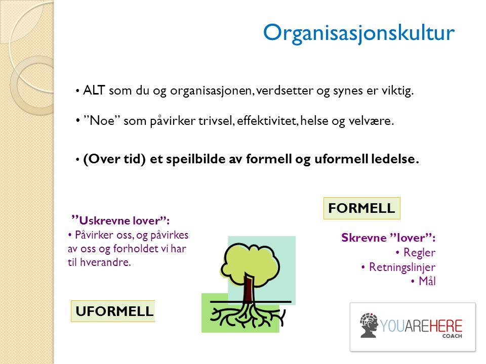 Organisasjonskultur ALT som du og organisasjonen, verdsetter og synes er viktig. Noe som påvirker trivsel, effektivitet, helse og velvære.