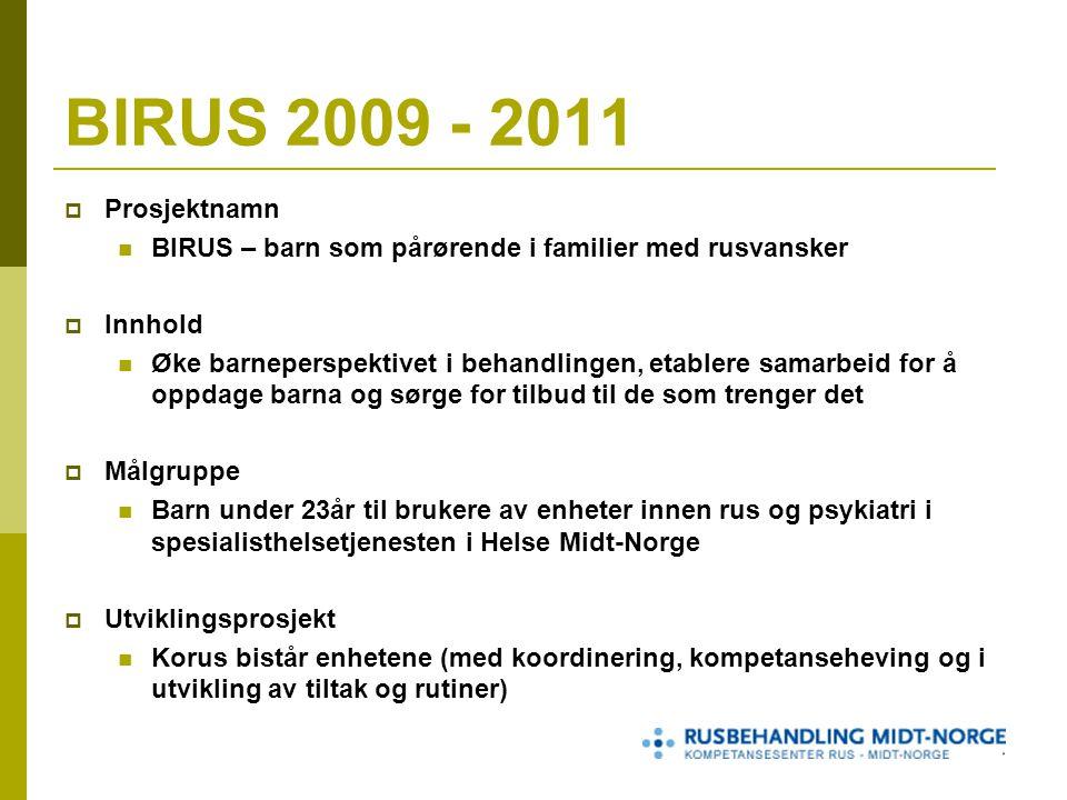 BIRUS 2009 - 2011 Prosjektnamn. BIRUS – barn som pårørende i familier med rusvansker. Innhold.