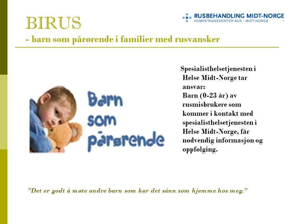 BIRUS - barn som pårørende i familier med rusvansker