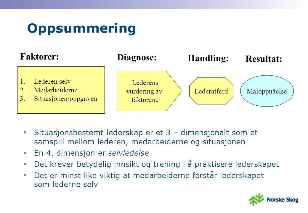 Oppsummering Faktorer: Diagnose: Handling: Resultat: