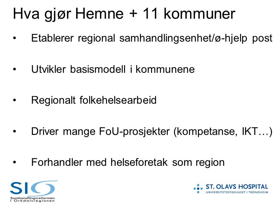 Hva gjør Hemne + 11 kommuner