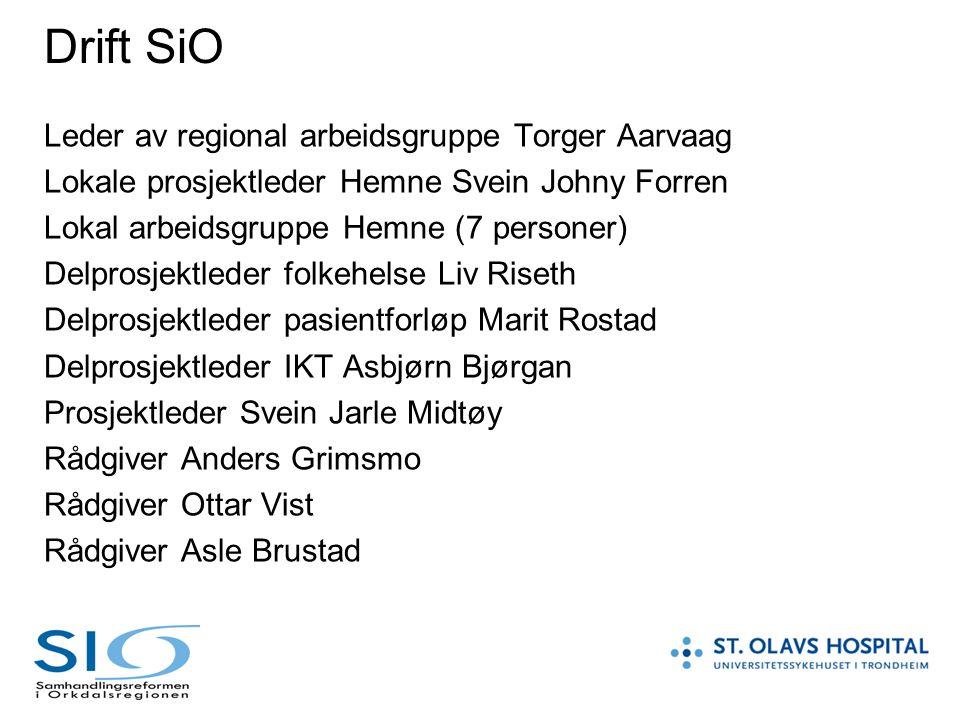 Drift SiO Leder av regional arbeidsgruppe Torger Aarvaag