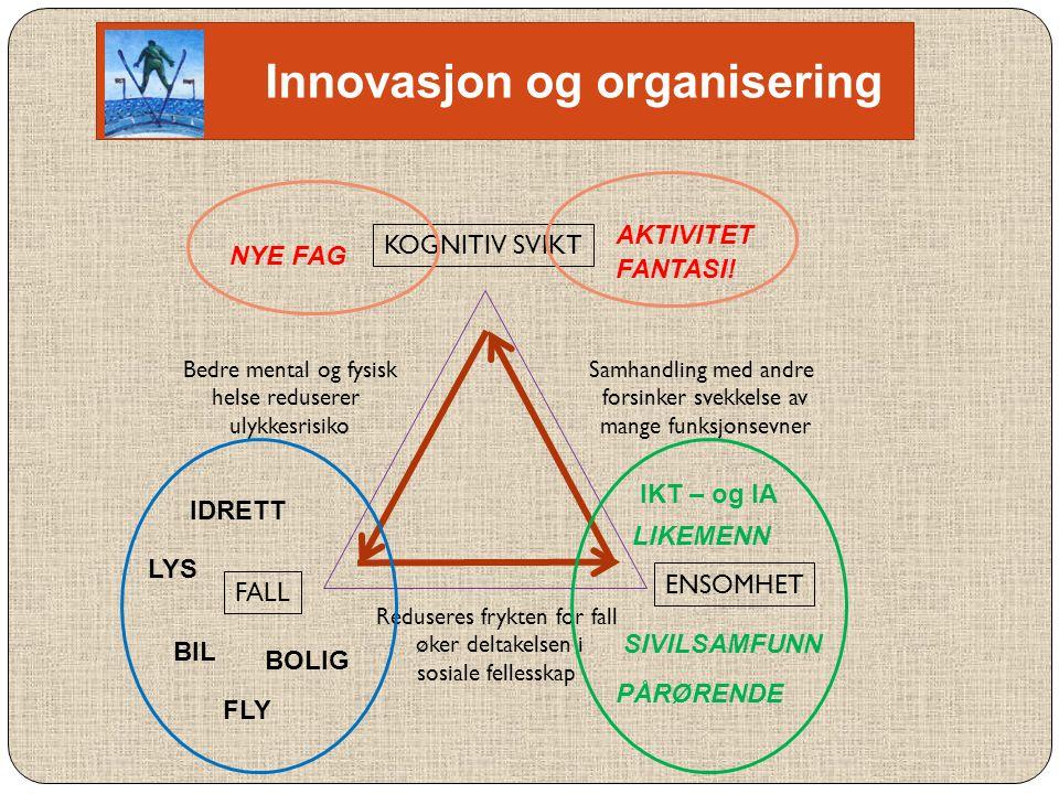 Innovasjon og organisering