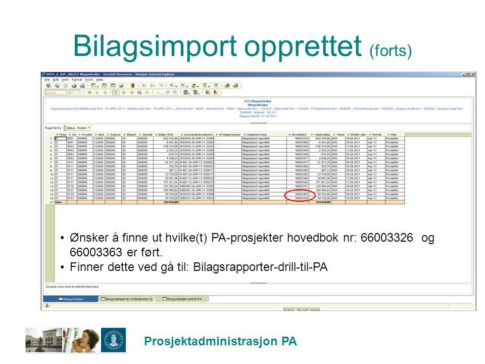 Bilagsimport opprettet (forts)