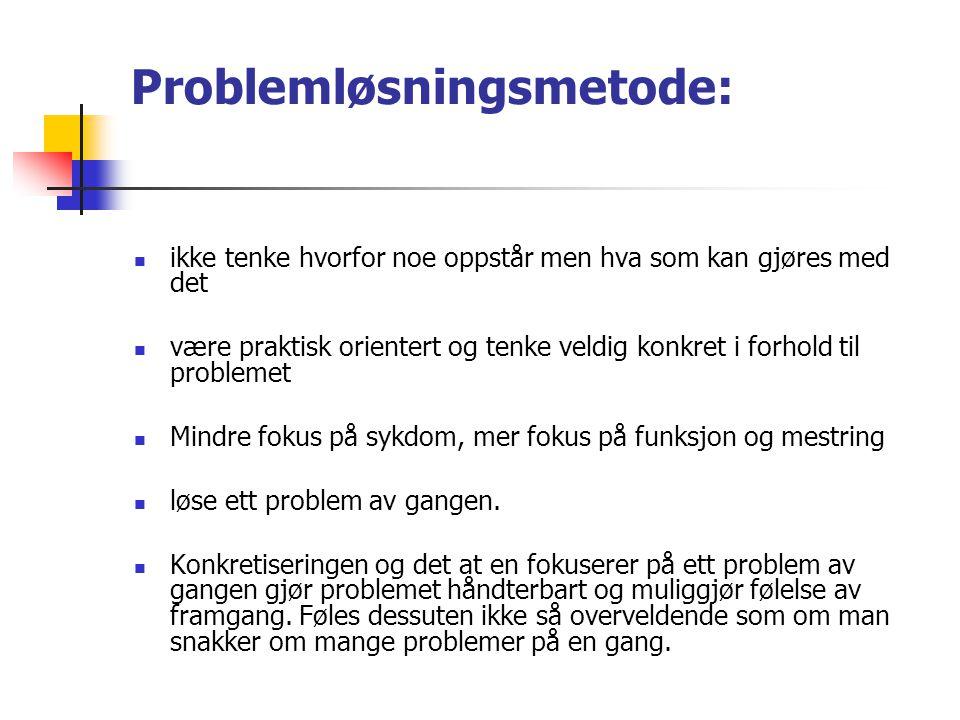 Problemløsningsmetode:
