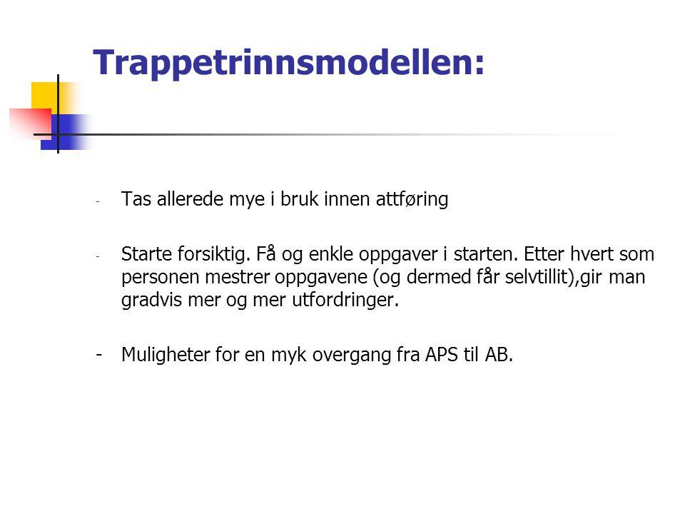 Trappetrinnsmodellen: