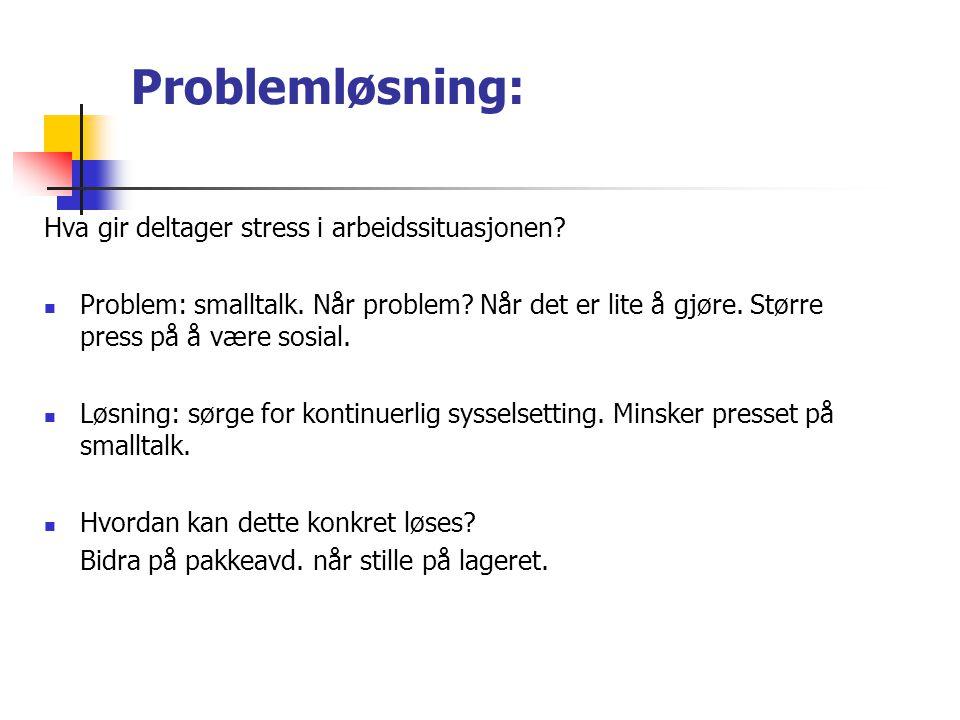 Problemløsning: Hva gir deltager stress i arbeidssituasjonen