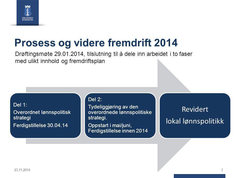 Prosess og videre fremdrift 2014