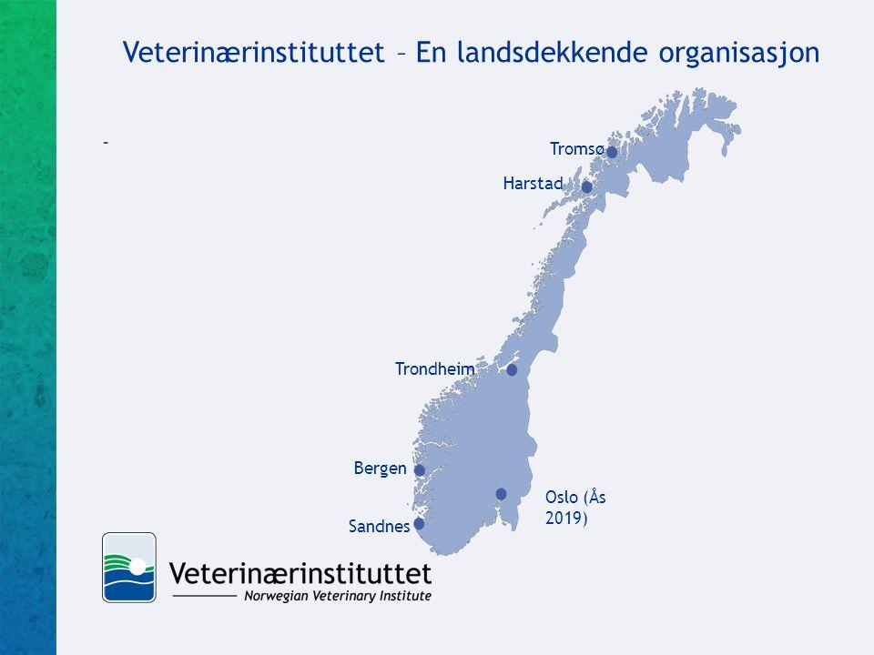 Veterinærinstituttet – En landsdekkende organisasjon