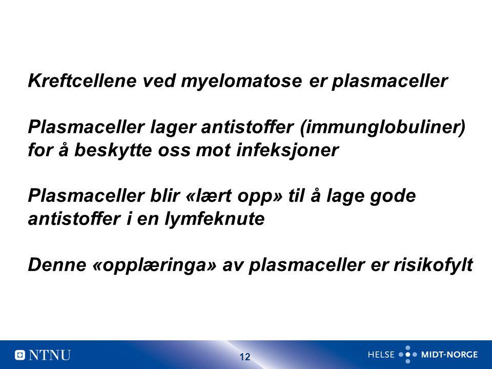 Kreftcellene ved myelomatose er plasmaceller