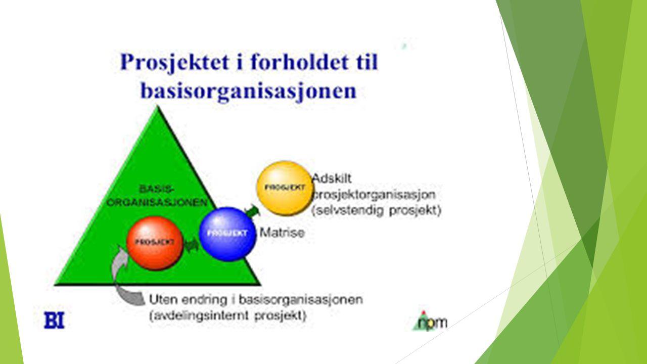Matriseorganisering: som skal gjennomføre et større antall mindre prosjekter i tillegge til den løpende virksomheten