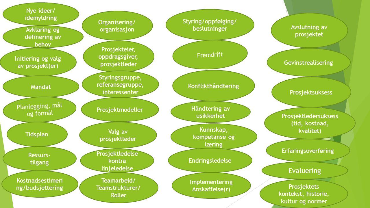 Evaluering Nye ideer/ idemyldring Styring/oppfølging/ beslutninger