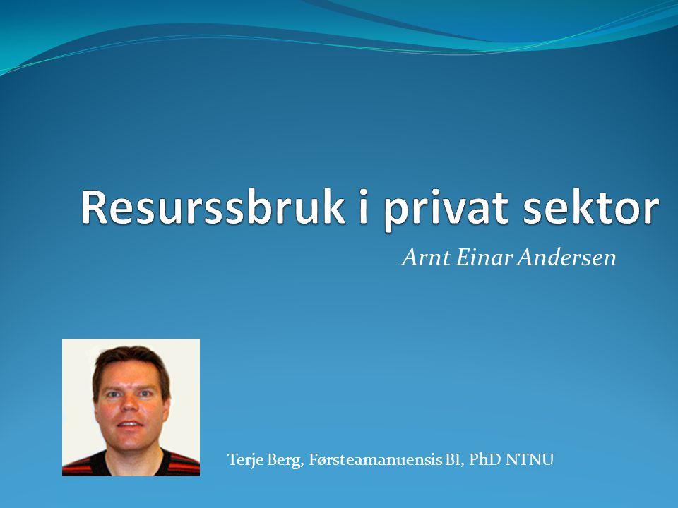 Resurssbruk i privat sektor