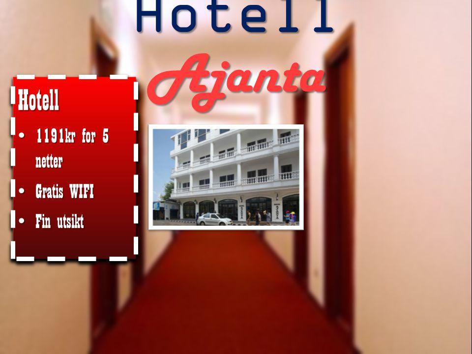 Hotell Ajanta Hotell 1191kr for 5 netter Gratis WIFI Fin utsikt