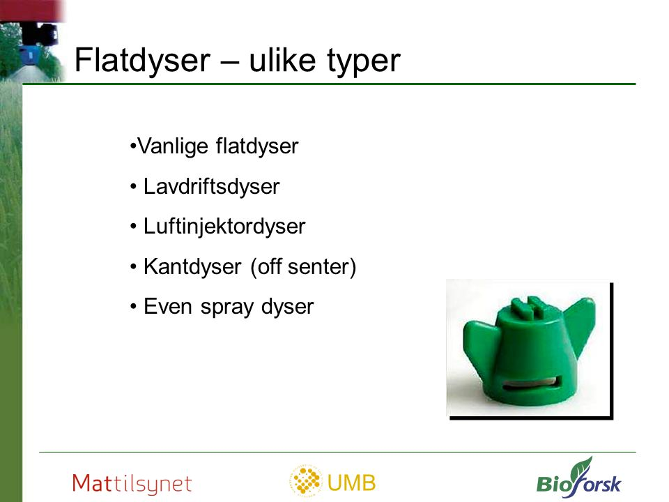 Flatdyser – ulike typer