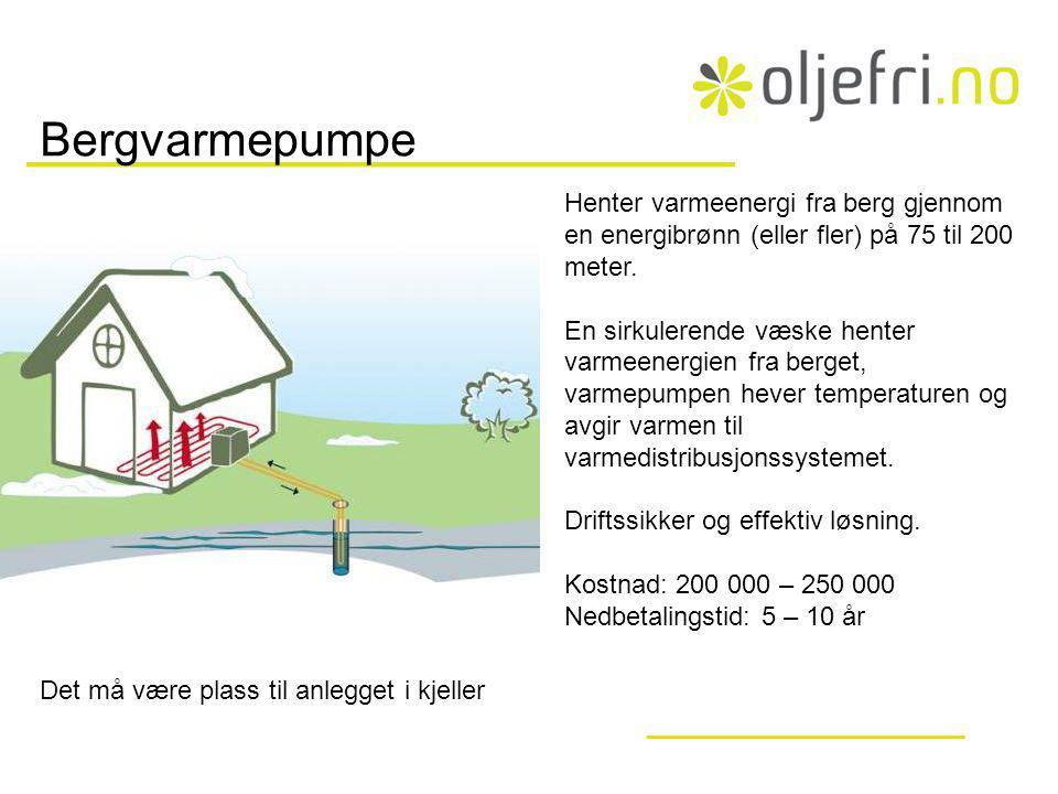 Bergvarmepumpe Henter varmeenergi fra berg gjennom en energibrønn (eller fler) på 75 til 200 meter.