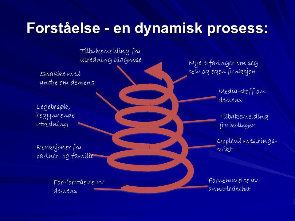Forståelse - en dynamisk prosess: