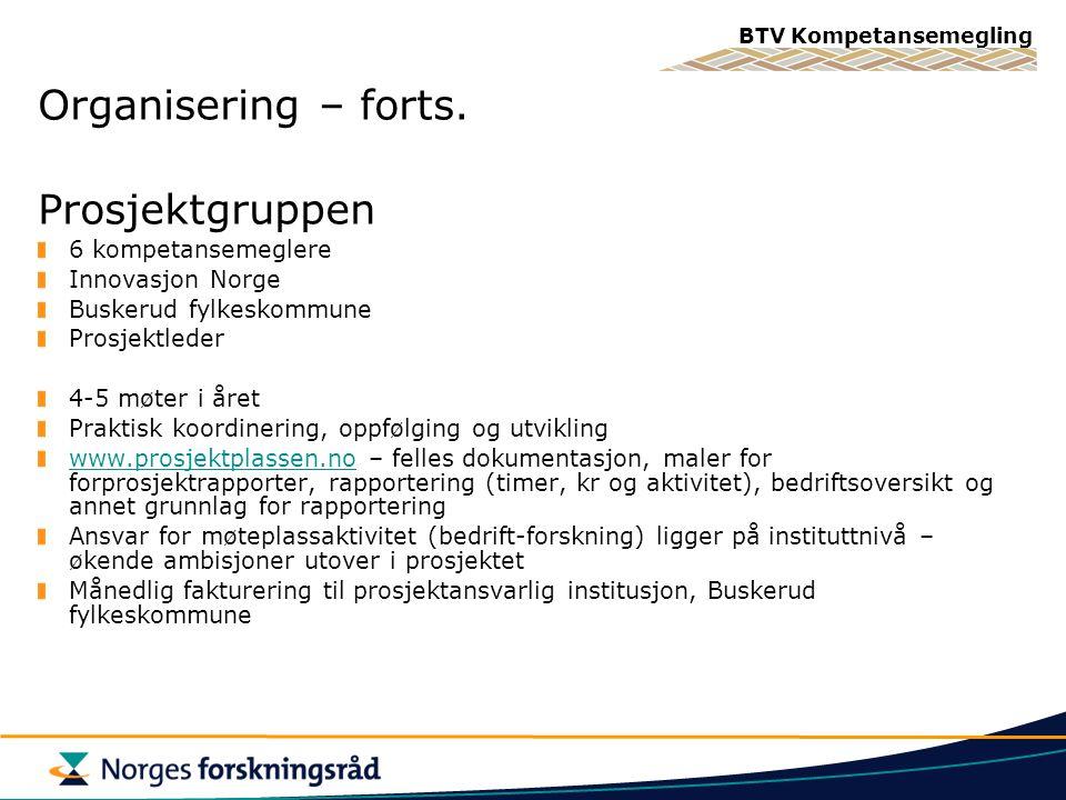 Organisering – forts. Prosjektgruppen 6 kompetansemeglere