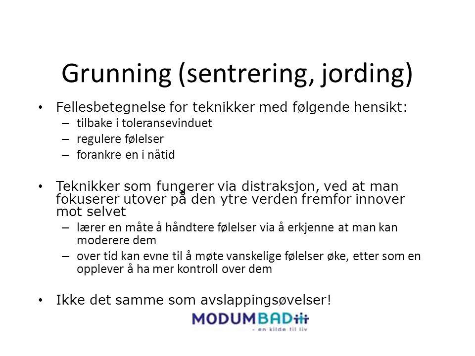 Grunning (sentrering, jording)