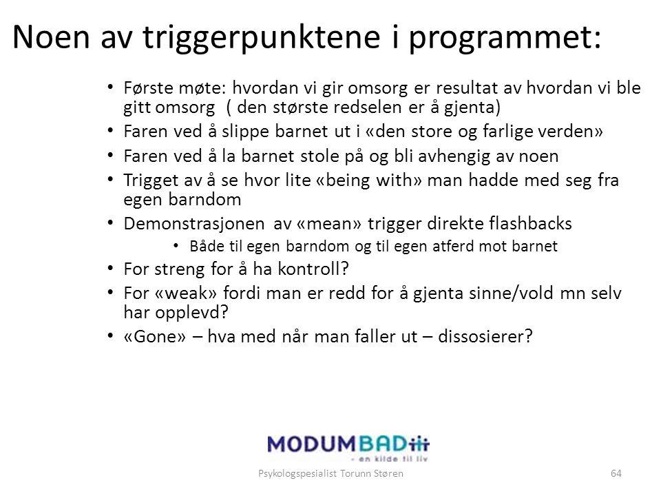 Noen av triggerpunktene i programmet: