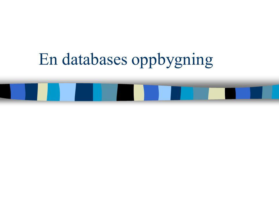 En databases oppbygning