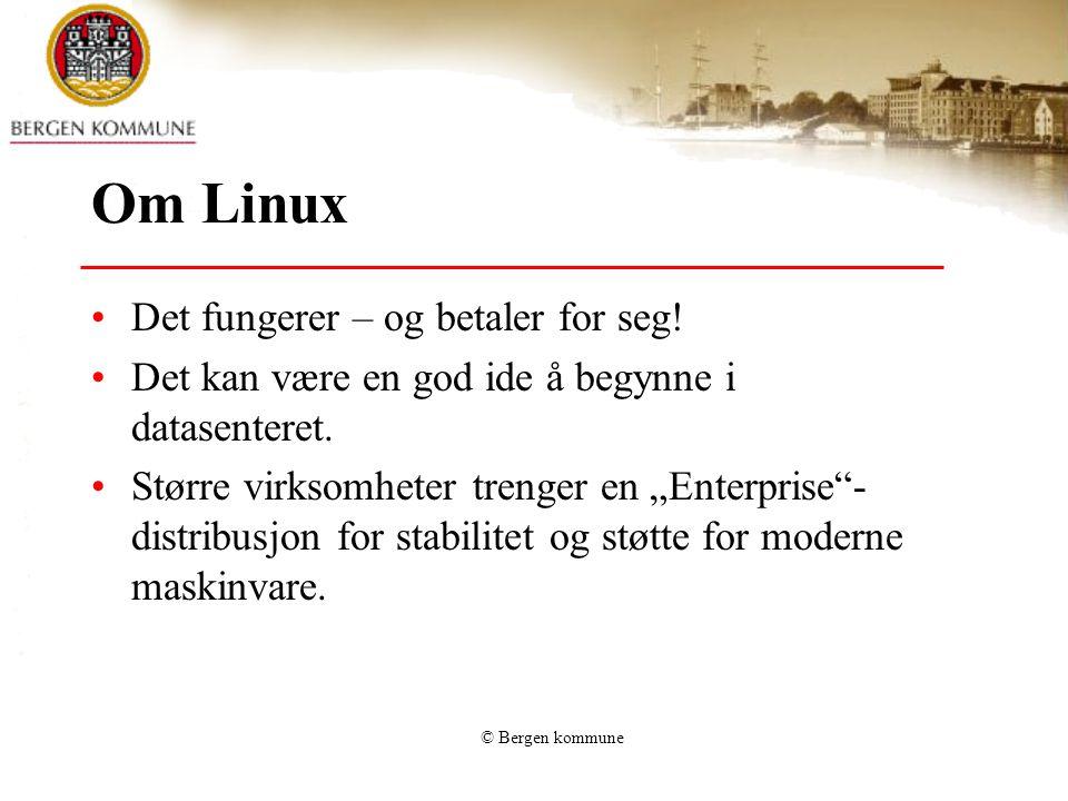 Om Linux Det fungerer – og betaler for seg!
