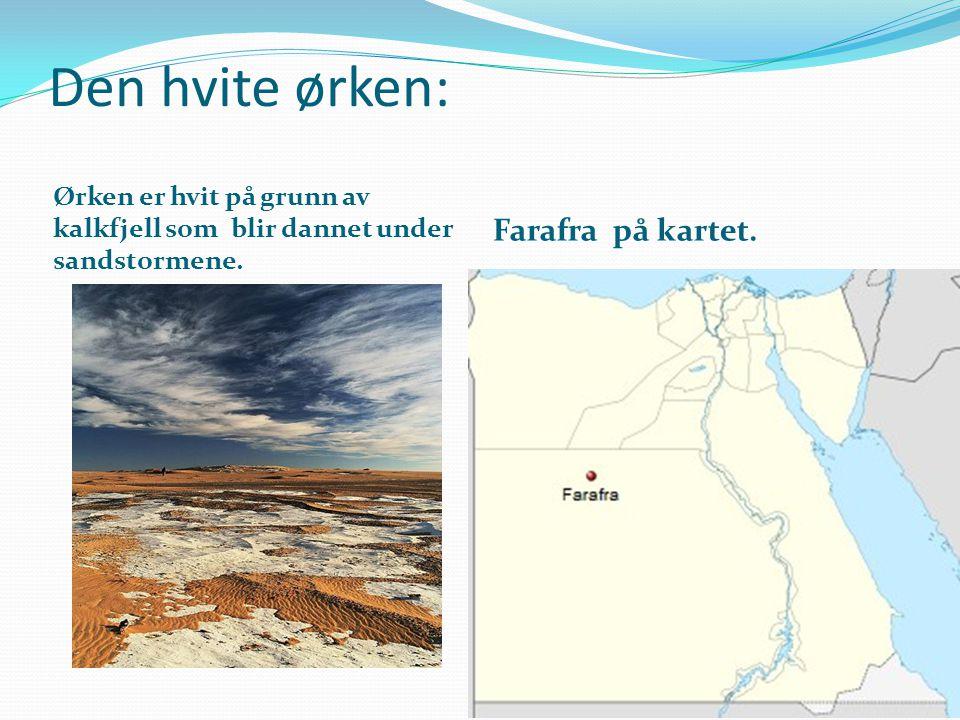 Den hvite ørken: Farafra på kartet.