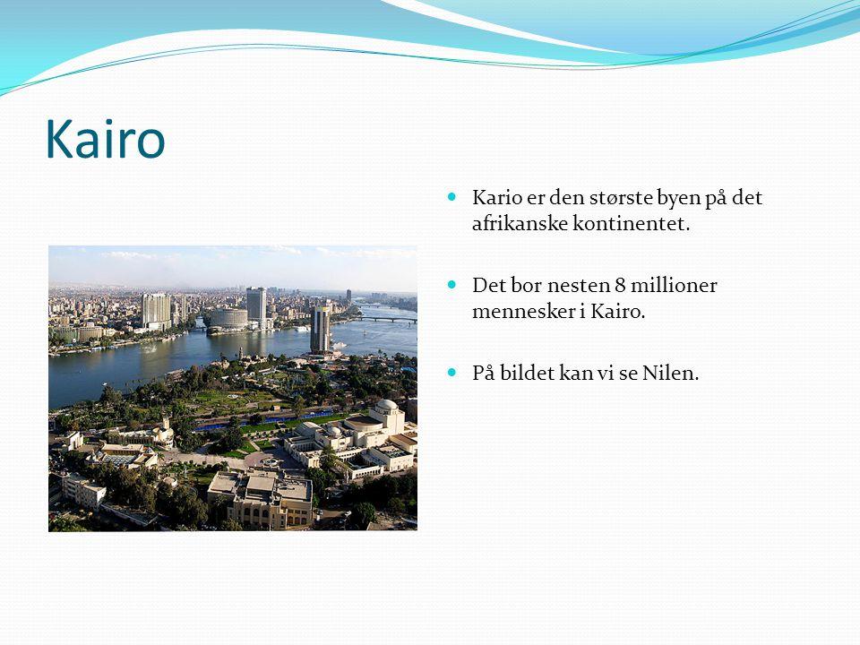 Kairo Kario er den største byen på det afrikanske kontinentet.