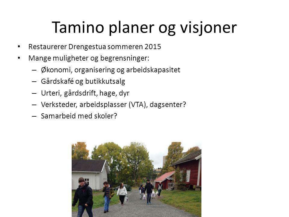 Tamino planer og visjoner