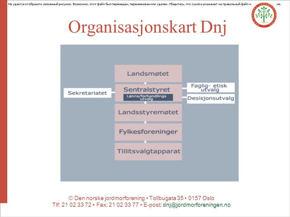 Organisasjonskart Dnj