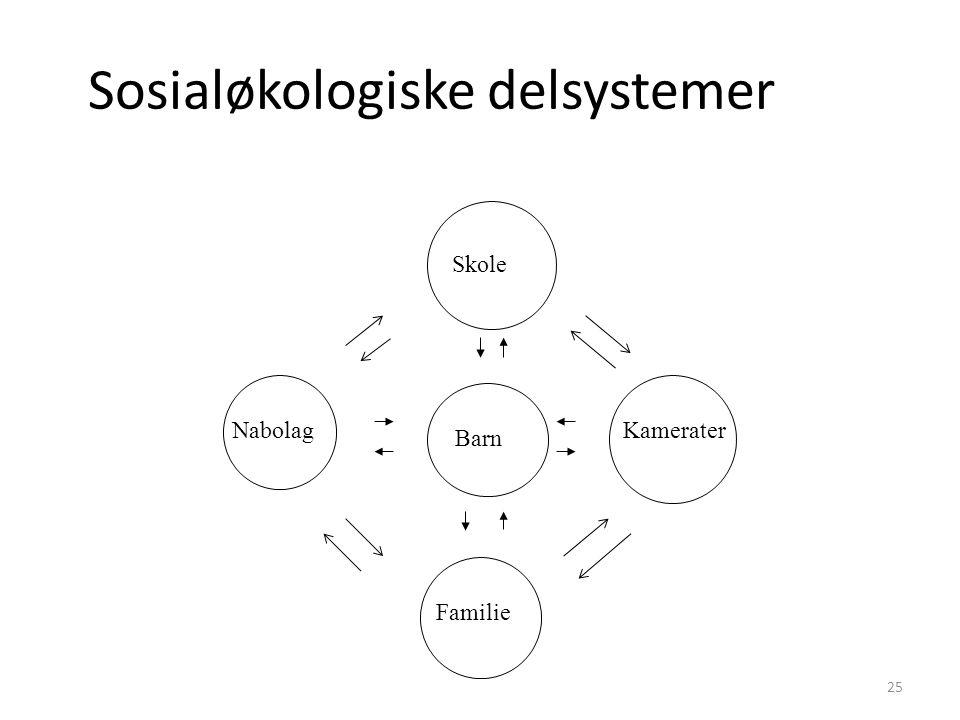 Sosialøkologiske delsystemer