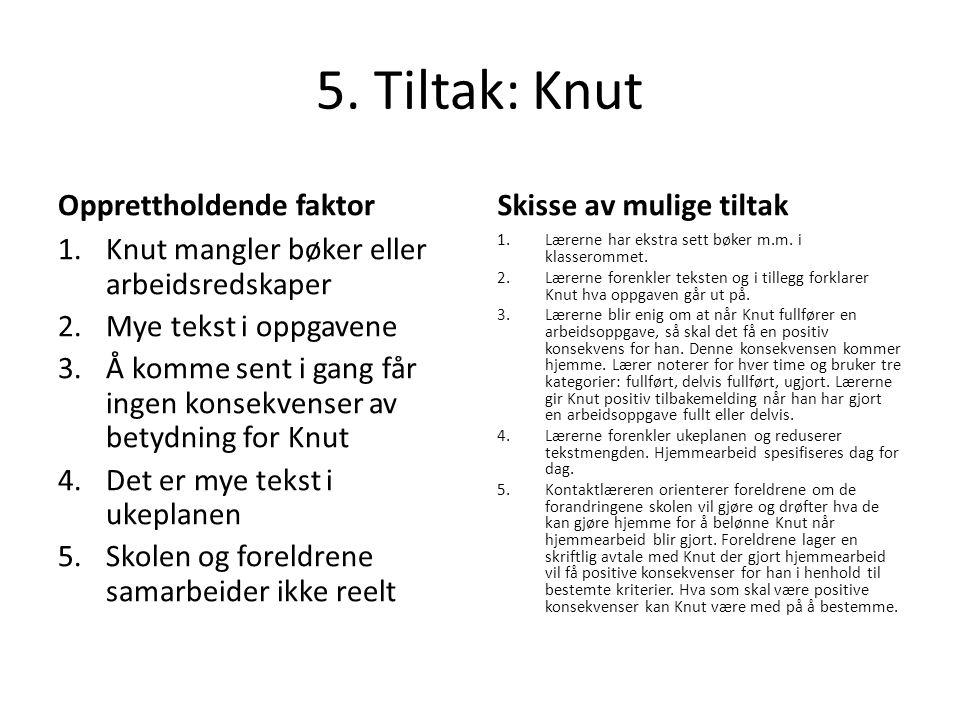 5. Tiltak: Knut Opprettholdende faktor Skisse av mulige tiltak
