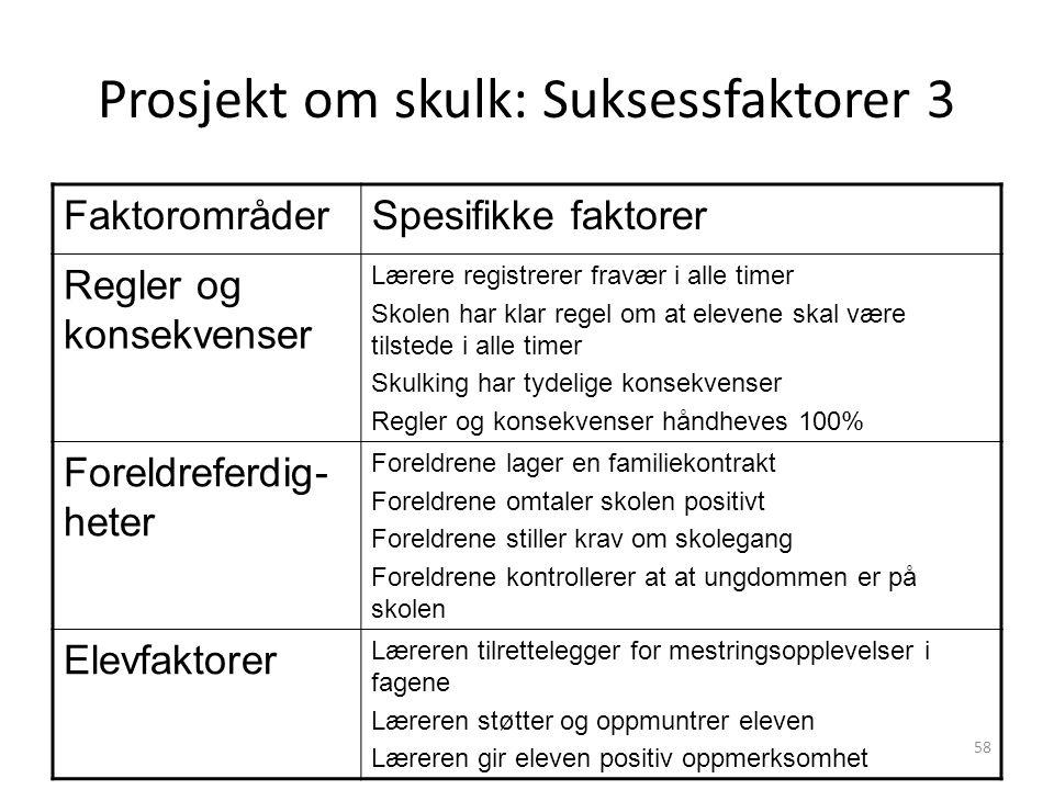Prosjekt om skulk: Suksessfaktorer 3