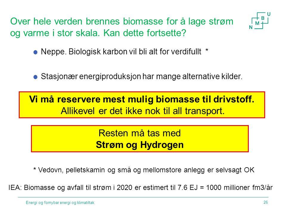 Vi må reservere mest mulig biomasse til drivstoff.