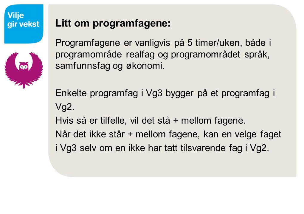 Litt om programfagene: