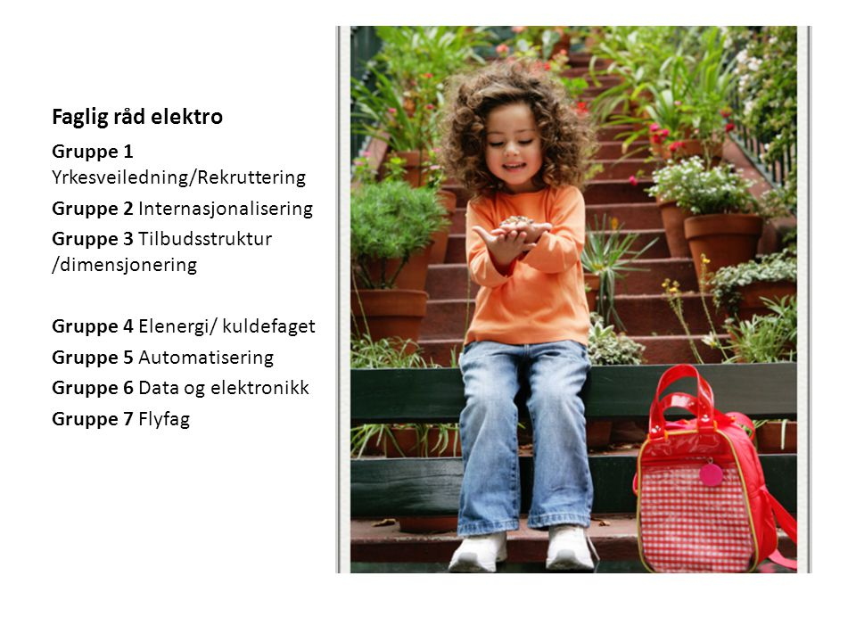 Faglig råd elektro Gruppe 1 Yrkesveiledning/Rekruttering